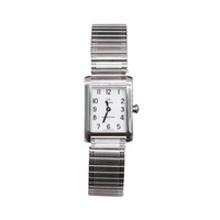Ladies Kensington Analogue Watch- NK159SIFE